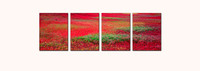 """Monet's Blueberry Fields"" quadtych"