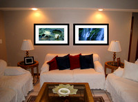 "Virtual fitting of ""Waterlilies"" and ""Proxy Falls 1H"" as matted and framed photographs"